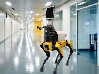 Chó robot Dr. Spot chẩn đoán Covid-19 từ xa