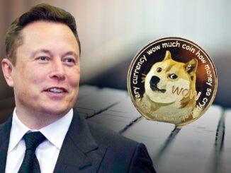 Stopelon chống lại tỷ phú Elon Musk